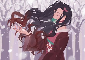 Rating: Safe Score: 31 Tags: black_hair gag japanese_clothes kamado_nezuko kimetsu_no_yaiba kimono long_hair saphirya snow watermark User: sadodere-chan