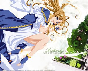 Rating: Safe Score: 30 Tags: aa_megami-sama belldandy blue_eyes brown_hair long_hair vector User: Betelgeuse