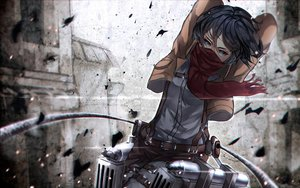 Rating: Safe Score: 32 Tags: aliasing mikasa_ackerman shingeki_no_kyojin tagme_(artist) User: luckyluna