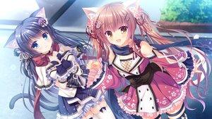 Rating: Safe Score: 110 Tags: 2girls animal_ears catgirl fuuma_tama fuuma_yura game_cg japanese_clothes neko-nin_exheart tail takano_yuki whirlpool User: luckyluna