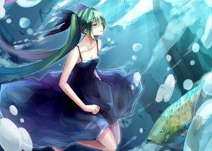 Rating: Safe Score: 43 Tags: animal aqua_eyes bubbles deep-sea_girl_(vocaloid) dress fish green_hair hatsune_miku long_hair nakadai_chiaki tears twintails underwater vocaloid water User: opai