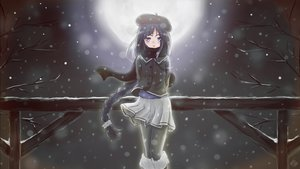 Rating: Safe Score: 81 Tags: alys_(vocaloid) blue_eyes blue_hair blush braids des'eikona hat kneehighs long_hair moon night pantyhose scarf signed skirt snow vocaloid winter User: Flandre93