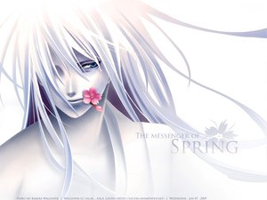 Rating: Safe Score: 34 Tags: all_male blue_eyes flowers gray_hair hiiro_no_kakera long_hair male polychromatic signed white_hair User: mikucchi