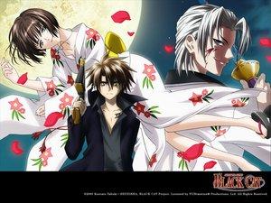Rating: Safe Score: 9 Tags: black_cat creed_diskence gun japanese_clothes kimono minatsuki_saya sword train_heartnet weapon User: Skrong