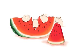 Rating: Safe Score: 25 Tags: animal cat chai_(artist) food fruit original signed watermelon white User: otaku_emmy