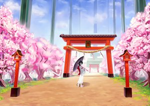 Rating: Safe Score: 52 Tags: black_hair cherry_blossoms japanese_clothes long_hair master-kouhei original umbrella User: Dust