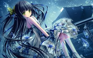 Rating: Safe Score: 155 Tags: black_hair blush butterfly dress flowers green_eyes long_hair ribbons rose see_through sky snow tinkle User: gnarf1975