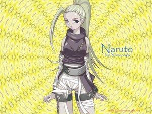 Rating: Safe Score: 41 Tags: bandage blonde_hair blue_eyes chain jpeg_artifacts long_hair naruto ninja ponytail tasaka_shinnosuke vector yamanaka_ino User: deblock