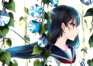 Rating: Safe Score: 87 Tags: black_hair blue_eyes blush flowers kyara36 long_hair original school_uniform waifu2x User: Eleanor