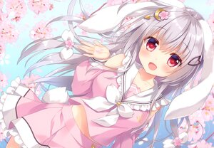 Rating: Safe Score: 9 Tags: ameto_yuki animal_ears bunny_ears bunnygirl cherry_blossoms flowers gray_hair long_hair original red_eyes scan tail User: Nepcoheart