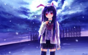 Rating: Safe Score: 122 Tags: animal_ears clouds goto_p purple_hair red_eyes reisen_udongein_inaba sky snow thighhighs touhou User: 秀悟