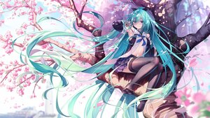 Rating: Safe Score: 94 Tags: aqua_eyes aqua_hair blush cherry_blossoms collar cosplay flowers hatsune_miku kantai_collection long_hair navel open_shirt petals pupupu school_uniform skirt spring thighhighs tree vocaloid User: otaku_emmy