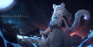 Rating: Safe Score: 72 Tags: animal_ears arknights bell braids catgirl dress gray_eyes headdress long_hair moon moyude_wangzi_jiang necklace night pramanix_(arknights) stars tail white_hair User: BattlequeenYume