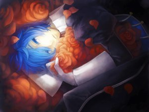 Rating: Safe Score: 26 Tags: blue_eyes blue_hair flowers kaito male petals vocaloid User: HawthorneKitty