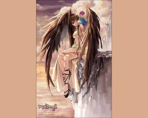 Rating: Safe Score: 31 Tags: animal bird brown_hair clouds gray_eyes long_hair mabinogi morrighan sky wings User: Oyashiro-sama