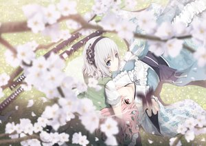 Rating: Safe Score: 126 Tags: blue_eyes butterfly flowers katana konpaku_youmu pink_hair saigyouji_yuyuko sword tamamono_atae touhou weapon User: opai