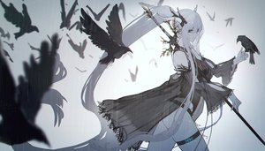 Rating: Safe Score: 123 Tags: animal arknights bird gradient polychromatic ryuuzaki_ichi shining_(arknights) sword weapon User: sadodere-chan