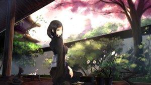 Rating: Safe Score: 193 Tags: animal black_hair cat cherry_blossoms flowers japanese_clothes kikivi kimono long_hair original petals spring User: FormX