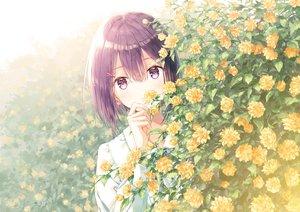 Rating: Safe Score: 254 Tags: flowers hiten_goane_ryu original purple_eyes purple_hair short_hair User: BattlequeenYume