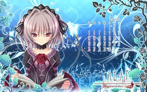 Rating: Safe Score: 89 Tags: calendar gray_hair hapymaher koku lolita_fashion naitou_maia purple_software User: Wiresetc
