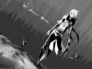 Rating: Safe Score: 29 Tags: allen_walker d.gray-man monochrome User: haru3173