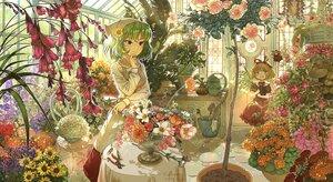 Rating: Safe Score: 37 Tags: dahuang flowers green_hair kazami_yuuka medicine_melancholy signed touhou User: specseaver