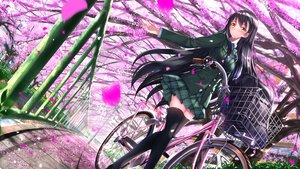 Rating: Safe Score: 78 Tags: bicycle black_hair cherry_blossoms headband long_hair original skirt swordsouls thighhighs yellow_eyes zettai_ryouiki User: luckyluna