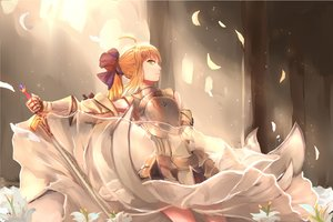 Rating: Safe Score: 84 Tags: 1761975416 armor blonde_hair dress fate_(series) fate/stay_night fate/unlimited_codes flowers green_eyes petals ponytail saber saber_lily sword weapon User: Flandre93