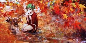 Rating: Safe Score: 111 Tags: autumn boots dress green_hair jq kagiyama_hina scarf short_hair touhou water yellow_eyes User: RyuZU