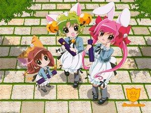 Rating: Safe Score: 0 Tags: dejiko di_gi_charat duplicate puchiko usada_hikaru User: Oyashiro-sama