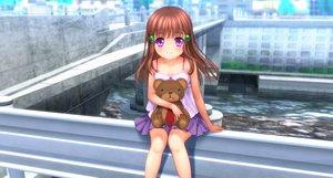 Rating: Safe Score: 44 Tags: brown_hair loli long_hair moonknives original purple_eyes teddy_bear User: gnarf1975