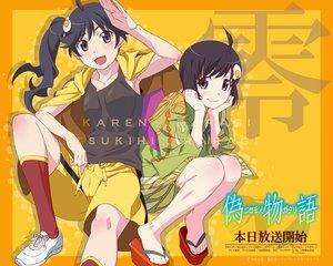 Rating: Safe Score: 106 Tags: araragi_karen araragi_tsukihi monogatari_(series) nisemonogatari User: Zamued
