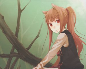 Rating: Safe Score: 45 Tags: animal_ears horo long_hair orange_hair red_eyes spice_and_wolf wolfgirl User: 秀悟