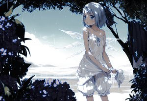 Rating: Safe Score: 252 Tags: blue blue_eyes blue_hair bow cirno dress flowers ke-ta leaves loli photoshop see_through touhou tree water wet wings User: yorgash