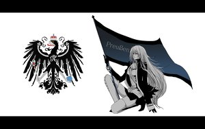 Rating: Safe Score: 39 Tags: axis_powers_hetalia polychromatic prussia_(hetalia) User: Tensa
