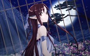 Rating: Questionable Score: 197 Tags: pointed_ears sword_art_online yuuki_asuna User: gnarf1975