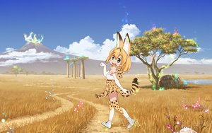 Rating: Safe Score: 50 Tags: animal animal_ears anthropomorphism blonde_hair car catgirl clouds dress elbow_gloves gloves grass kemono_friends serval short_hair sky tagme_(artist) tail thighhighs tree water User: RyuZU