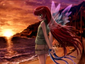 Rating: Safe Score: 8 Tags: air beach michiru moonknives sunset wings User: 秀悟