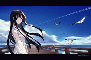 Rating: Safe Score: 65 Tags: akiyama_mio animal bird black_eyes black_hair clouds dress k-on! long_hair sky summer_dress water zjm530280188 User: RyuZU