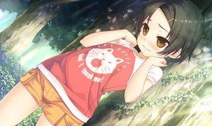 Rating: Safe Score: 61 Tags: blush cura game_cg loli lose maitetsu minokasa_nagi tears User: mattiasc02