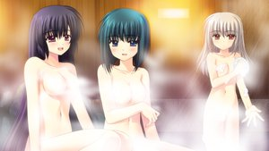 Rating: Questionable Score: 33 Tags: 3girls bath breasts game_cg hananomiya_ako kona_nako navel nishimata_aoi nude onsen sekai_seifuku_kanojo tagme_(character) User: oranganeh