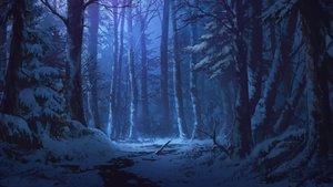 Rating: Safe Score: 131 Tags: blue dao_dao dark forest night nobody original scenic snow tree winter User: RyuZU