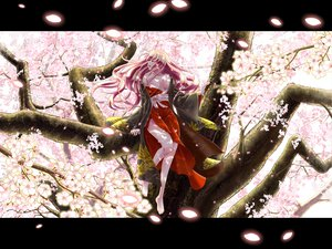 Rating: Safe Score: 84 Tags: barefoot breasts cherry_blossoms japanese_clothes megurine_luka petals shoudoubutsu tree vocaloid User: FormX
