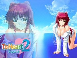 Rating: Questionable Score: 14 Tags: aquaplus kousaka_tamaki leaf to_heart to_heart_2 User: Oyashiro-sama