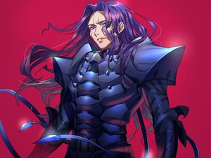 Rating: Safe Score: 14 Tags: all_male armor fate/grand_order fate_(series) lancelot_(fate) long_hair male purple_eyes purple_hair red tenobe User: otaku_emmy