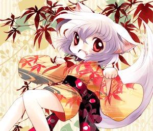 Rating: Safe Score: 35 Tags: animal_ears gray_hair inubashiri_momiji japanese_clothes kimono red_eyes short_hair tail touhou wolfgirl yume_shokunin User: PAIIS