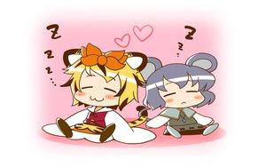 Rating: Safe Score: 3 Tags: animal_ears azuharu catgirl chibi mousegirl nazrin sleeping tail toramaru_shou touhou User: SciFi