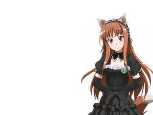 Rating: Safe Score: 145 Tags: animal_ears brown_hair dress horo long_hair ookami_to_koushinryou wolfgirl User: bryci