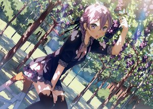 Rating: Safe Score: 187 Tags: blush braids food fruit kantoku purple_eyes purple_hair scan short_hair thighhighs tree twintails User: RyuZU