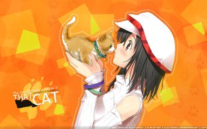 Rating: Questionable Score: 74 Tags: animal cat hat kantoku User: 秀悟